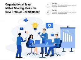 Organizational Team Mates Sharing Ideas For New Product Development