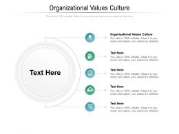 Organizational Values Culture Ppt Powerpoint Presentation Model Pictures Cpb