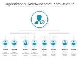 Organizational Worldwide Sales Team Structure