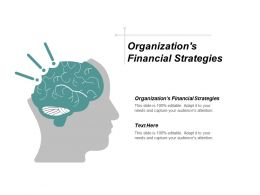 Organizations Financial Strategies Ppt Powerpoint Presentation Inspiration Tips Cpb