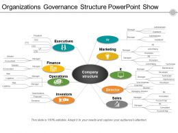 Organizations Governance Structure Powerpoint Show