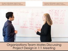 Organizations Team Mates Discussing Project Design In 1 1 Meeting