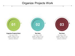 Organize Projects Work Ppt Powerpoint Presentation Inspiration Graphics Template Cpb