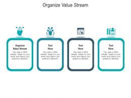 Organize Value Stream Ppt Powerpoint Presentation Gallery Model Cpb
