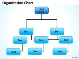 origanization_chart_56_Slide01