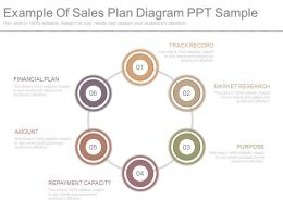 Original Example Of Sales Plan Diagram Ppt Sample