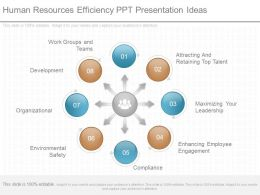 Original Human Resources Efficiency Ppt Presentation Ideas