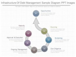 Original Infrastructure Of Debt Management Sample Diagram Ppt Images