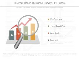 Original Internet Based Business Survey Ppt Ideas