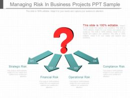 Original Managing Risk In Business Projects Ppt Sample