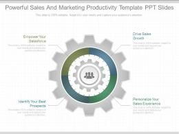 Original Powerful Sales And Marketing Productivity Template Ppt Slides