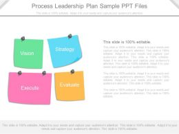 Original Process Leadership Plan Sample Ppt Files