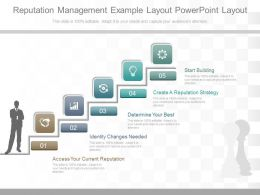Original Reputation Management Example Layout Powerpoint Layout