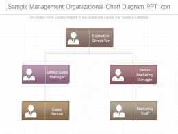 Original Sample Management Organizational Chart Diagram Ppt Icon