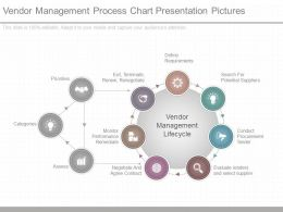 Original Vendor Management Process Chart Presentation Pictures