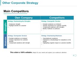 Other Corporate Strategy Powerpoint Slide Information
