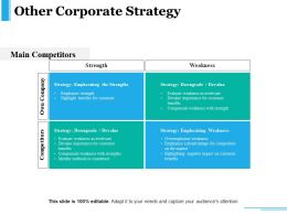 Other Corporate Strategy Presentation Ideas