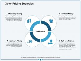 Other Pricing Strategies More Features Ppt Powerpoint Presentation Infographics Background
