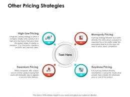 Other Pricing Strategies Ppt Powerpoint Presentation Infographics