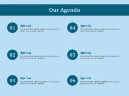 Our Agenda Ppt Slides Guide
