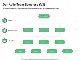 Our Agile Team Structure Delivery Teams Ppt Powerpoint Presentation Portfolio