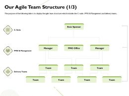 Our Agile Team Structure Management Terms Ppt Powerpoint Presentation Design Templates