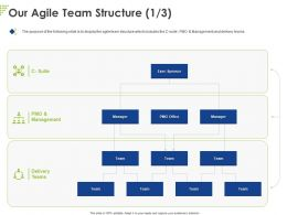 Our Agile Team Structure Ppt Powerpoint Presentation Show Graphics Example