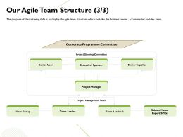 Our Agile Team Structure Programme Committee Ppt Powerpoint Presentation Influencers