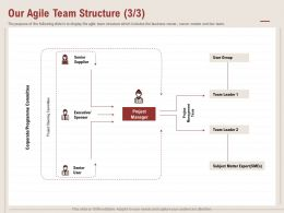 Our Agile Team Structure Subject Matter Ppt Powerpoint Presentation Inspiration Rules