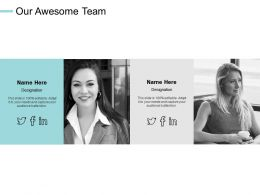 Our Awesome Team Introduction Teamwork E202 Ppt Powerpoint Presentation File Aids