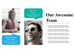 Our Awesome Team Powerpoint Slide Designs