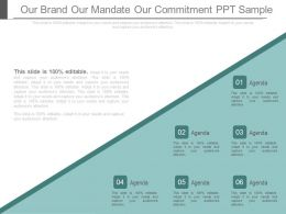 Our Brand Our Mandate Our Commitment Ppt Sample