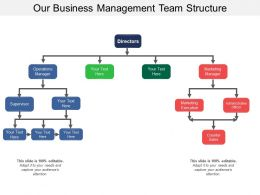 Our Business Management Team Structure