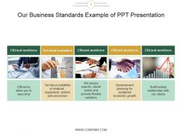 Our Business Standards Example Of Ppt Presentation