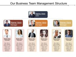 Our Business Team Management Structure