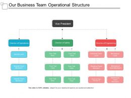 Our Business Team Operational Structure