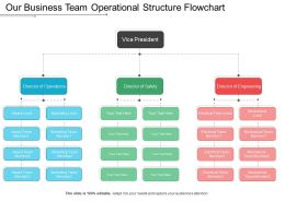 Our Business Team Operational Structure Flowchart