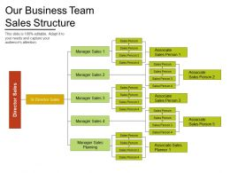 Our Business Team Sales Structure