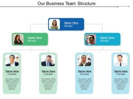 Our Business Team Structure