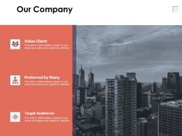 Our Company Target Audience A646 Ppt Powerpoint Presentation Layouts Design Templates