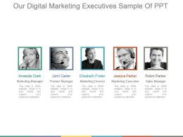 Our Digital Marketing Executives Sample Of Ppt