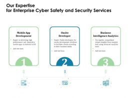 Our Expertise For Enterprise Cyber Safety And Security Services Ppt File Aids