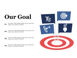 Our Goal Campaign Strategy Ppt File Deck