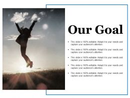 Our Goal Ppt Summary Designs