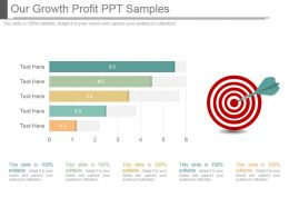Our Growth Profit Ppt Samples