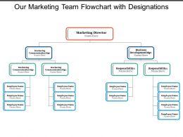 our_marketing_team_flowchart_with_designations_Slide01