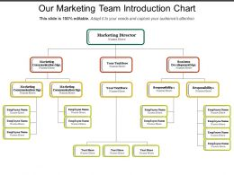 Our Marketing Team Introduction Chart