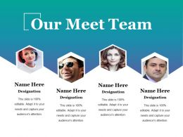 Our Meet Team Sample Of Ppt Presentation