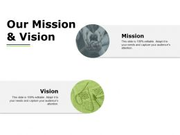 Our Mission And Vision Ppt Powerpoint Presentation File Professional