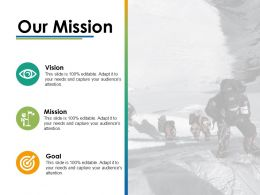 Our Mission Vision Ppt Infographics Example Introduction